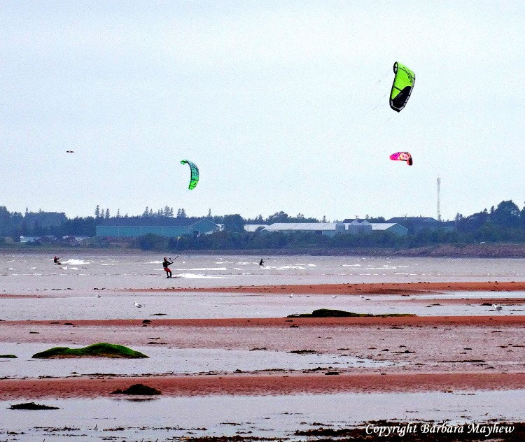 Water Sports in PEI